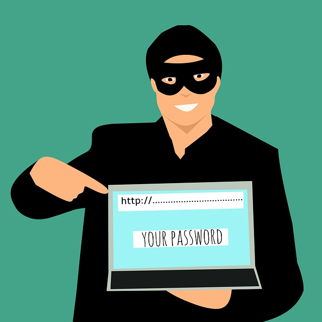 סכנות ברשת